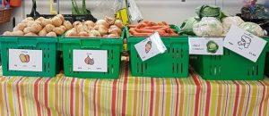 Produce on display at NEHM